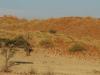 dsc04899-tsonab-valley-namib-abend
