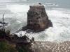 dsc07797-muriwai-beach-mit-gannets