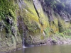 dsc07994-whanganui-river-journey