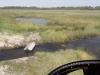 dsc02851-okavango-delta