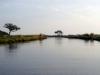 dsc02905-okavango-delta