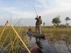 dsc03000-okavango-delta-mokoro-trip