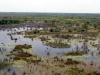 dsc03079-okavango-delta