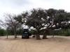 dsc03226-khama-rhino-sanctuary