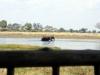 img_3986-okavango-delta