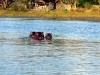 img_4027-okavango-delta