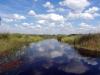 dsc09634-okavango-delta