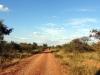 dsc09661-matopo-zimbabwe