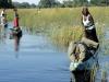 mg_5572-okavango-delta