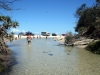 img_9334-fraser-island-eli-creek