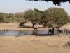 dsc01062-tembe-elefant-park