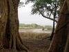 dsc01068-ndumo-game-reserve