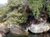 dsc00832-drakensberge-monks-cowl