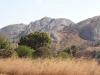 dsc01912-viphya-plateau
