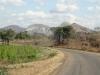 dsc01914-viphya-plateau