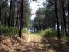 dsc01642-zomba-plateau