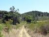 dsc01645-zomba-plateau