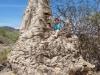 dsc03451-baobab