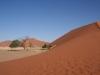 img_6931-dune-45