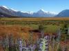 dsc08608-southern-alps