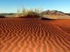 dsc09319-sessriem-elim-dune