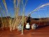 dsc09329-sessriem-elim-dune