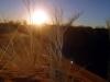 dsc09343-sessriem-elim-dune