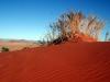 img_9613-sessriem-elim-dune