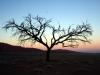 img_9660-sessriem-dune-45