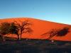img_9670-sessriem-dune-45