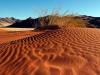 dsc00410-toktokkie-trail-sandverwehung