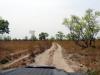 dsc02369-liuwa-plains-np-tiefer-sand