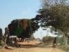 dsc01930-grenzuebergang-malawi-zu-zambia